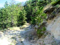 Rough Trail Here