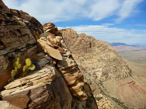 View to Windy Peak
