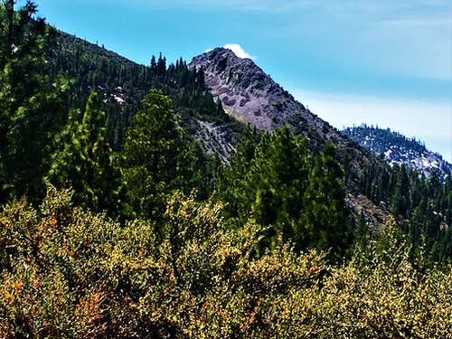 View to Cone Peak from the road