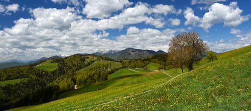 Ermanovec W panorama
