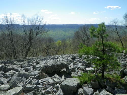 Tuscarora Trail View