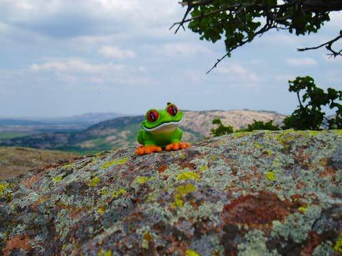 Jacko on the 2255' summit of...