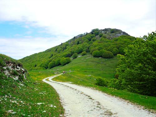 Monte Vignola