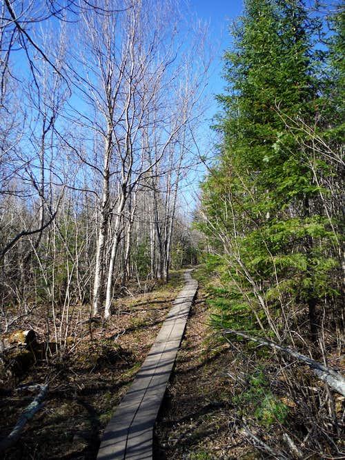 Trail from Britton Peak area to Carlton Peak