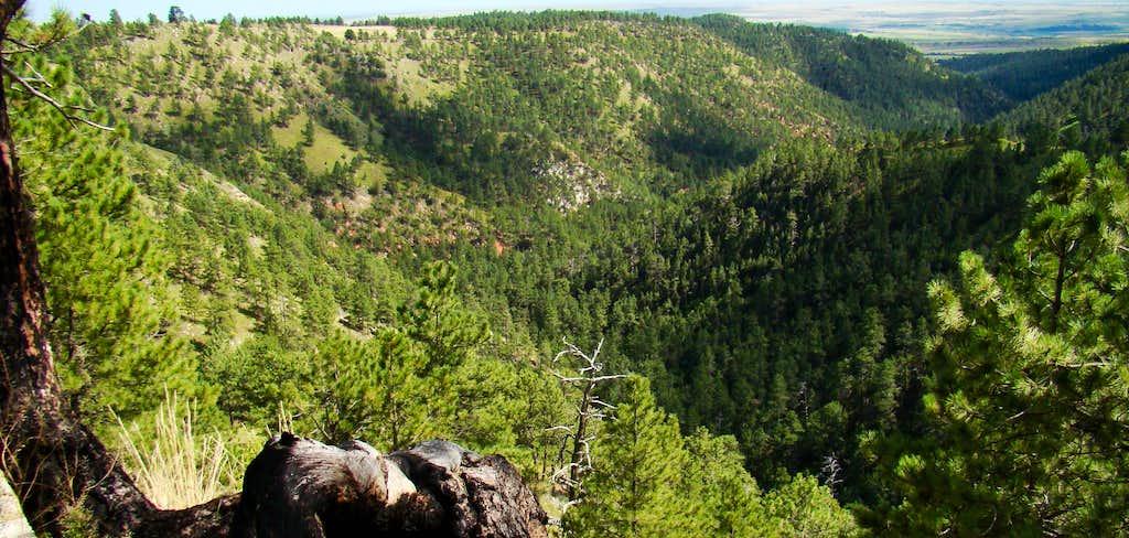 Spring Canyon, Fall River County, SD