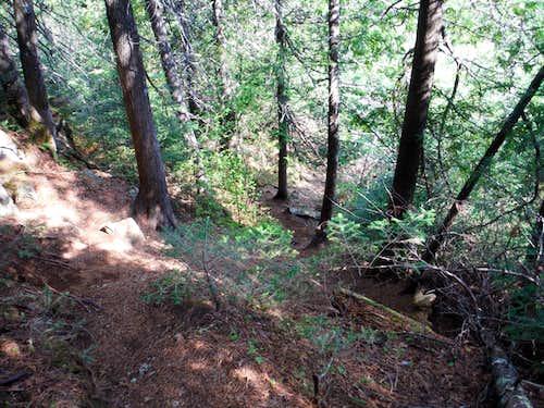 Steep Downhill - Caribou Rock Trail