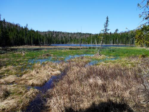 Pond Along Border Route