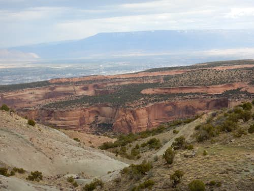 View from Black Ridge Trail