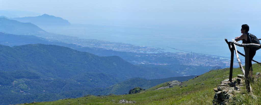 Ligurian coastline from Monte Pennello
