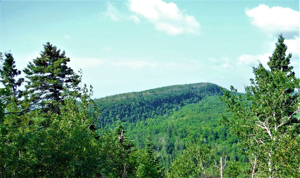 Leveaux Mountain from Oberg Mountain