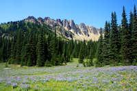 25. Palisades meadow with Palisades behind
