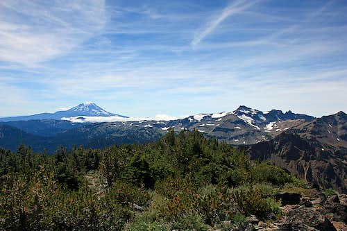 Mt. Adams and Goat Rocks from summit