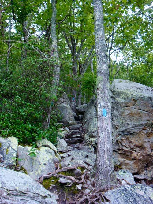 The Steep Blue Blazed Trail