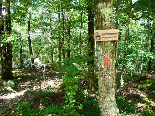 Take the Red Blazed Trail from the Upper Campground