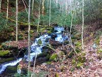 Big Tuni Creek