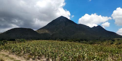 Cerro Pizarro