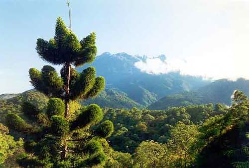 Mt.Kinabalu from the...