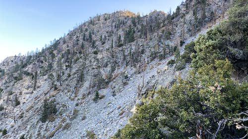 East slopes