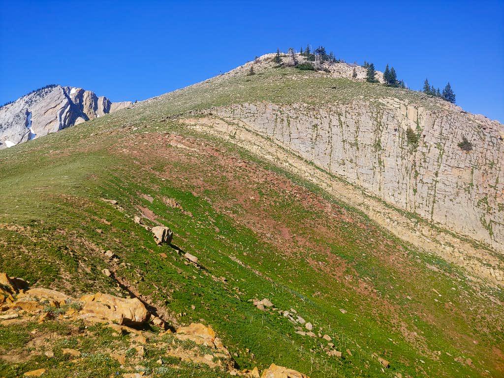 The Ridge To Hike Up