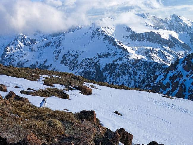 Ptarmigan on Deming Mountain...