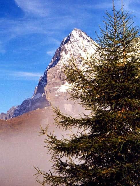 Eiger northwest face seen...