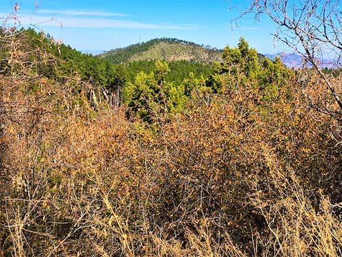Zoom shot of south face of Madera Peak