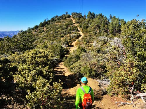 Descending Madera Peak; ready to re-ascend a sub-hill