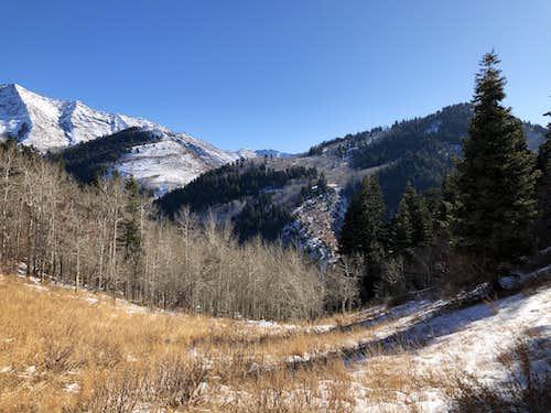 Maple Mountain - 'road to nowhere'