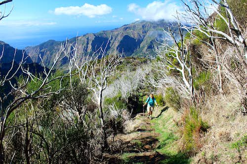 Full circle – A return to the island of Madeira
