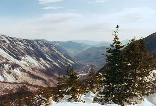 Looking into Crawford Notch...