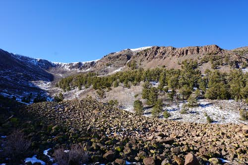 West side of the basin area on this northwest part of Nevada's Mt. Jefferson; late Nov. 2020