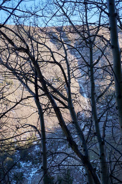 A portion of Mt. Jefferson's northeastern ridgeline as seen near Wells Creek through a grove of trees; late Nov. 2020