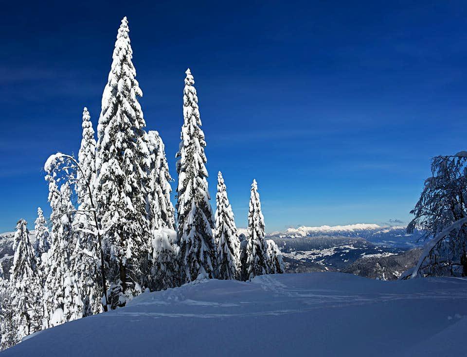 On the NW ridge of Blegoš