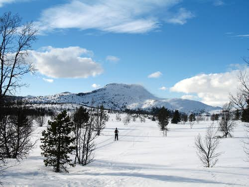 Nordic skiing: It's not the destination that counts…