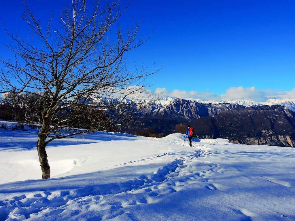Monte Creino summit plateau