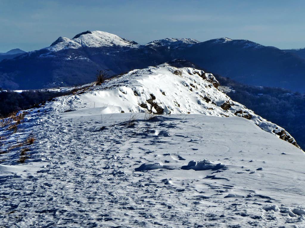 Eastward view from the snowy flat summit of Alpesisa