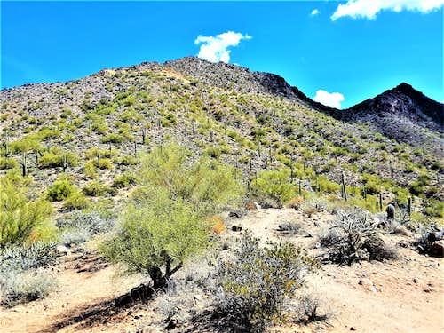 Pt. 3113 and Temptation Peak from Bulldog Saddle