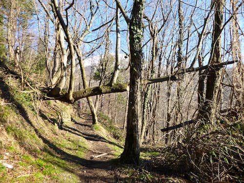 Along the path from Creto to Gola di Sisa