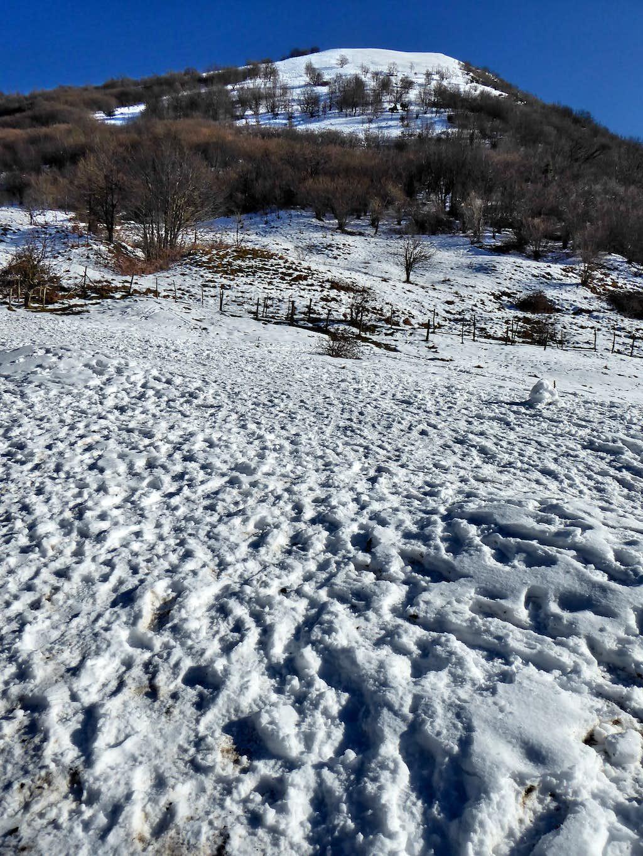 North-West side of Alpesisa from Gola di Sisa