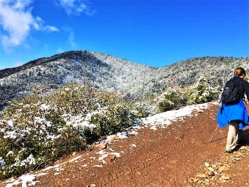 Cornucopia Ridge in view after a snowstorm 3-14-2021