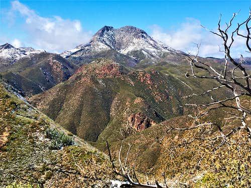 Saddle Mountain 6,535' from Cornucopia Ridge