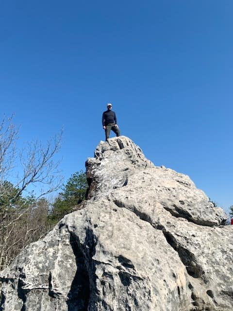 Top of the Tooth