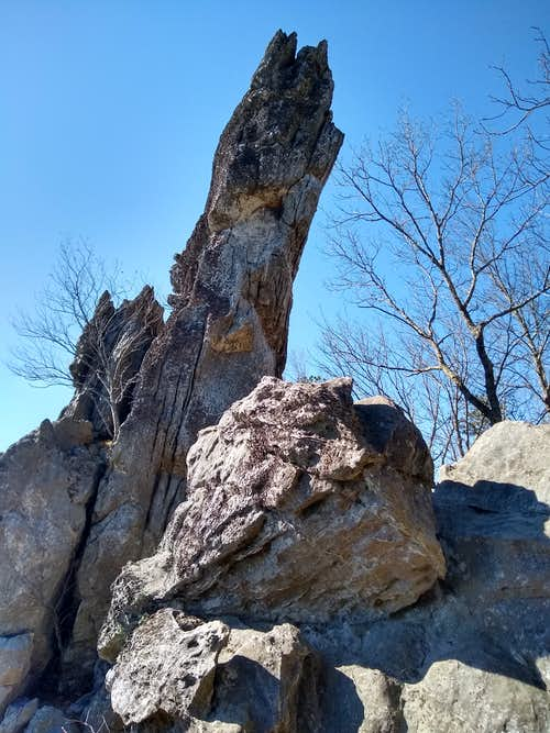 Looking Up the Dragon's Tooth