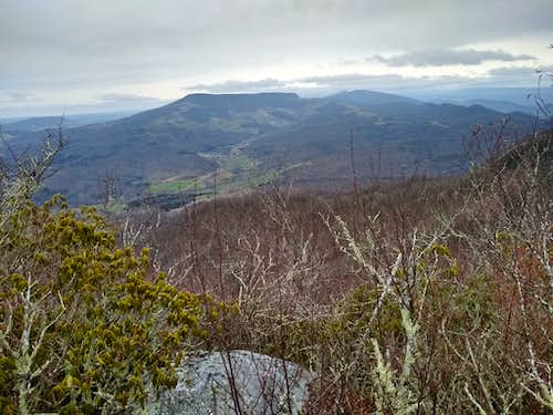 View from Summit of Middle Knob