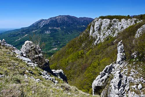 Along the edge of Trnovski gozd