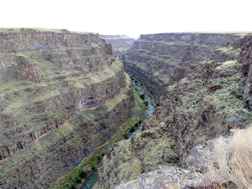 Bruneau Canyon Rim North of Viewpoint