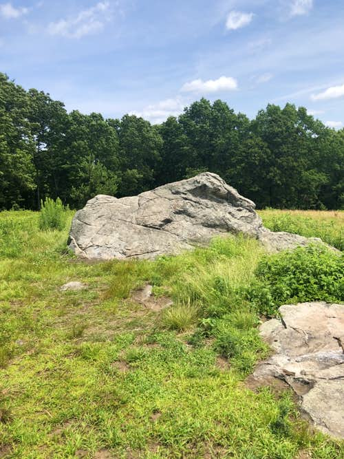 Charles W Ward Reservation - 2021