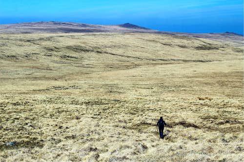 Taw valley, Dartmoor, Devon