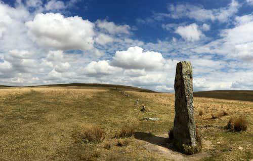 Standing stones in a row. Ditsworthy Warren, Dartmoor.