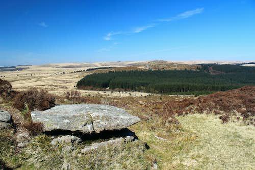 Bellever Tor (443m), Dartmoor.